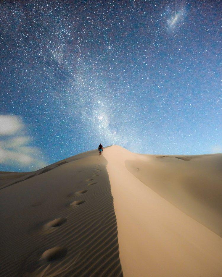 THE VITALITY OF LIVING A PURPOSEFUL LIFE